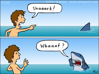 Shaaark! Whaaat?