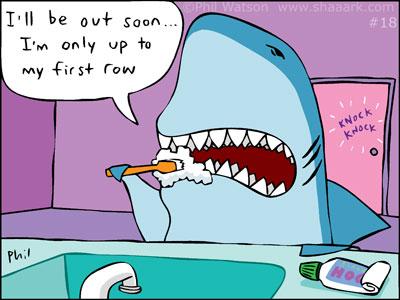 brushing teeth shaaark