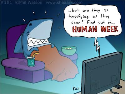 shark watching human week cartoon