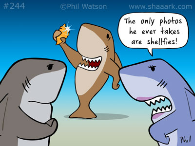 shaaark cartoon shellfies