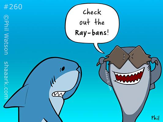 shark cartoon ray bans