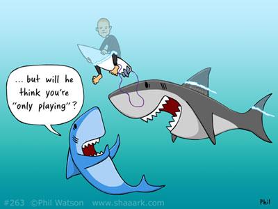 Shark cartoon mick fanning