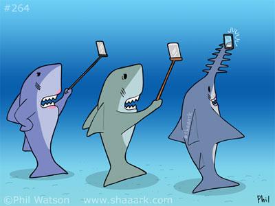 Shark cartoon sawfish selfie