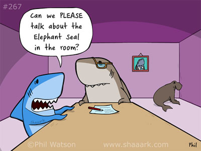 shark cartoon elephant seal in room