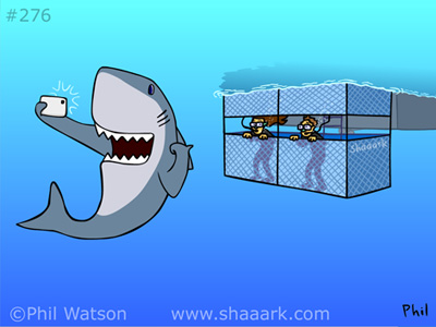 Shark cartoon cage diving selfie