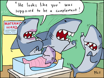 Shark cartoon baby looks like you