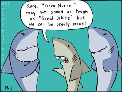 Shark cartoon mean grey nurse